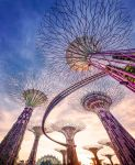 Super alberi Singapore Gardens By the Bay