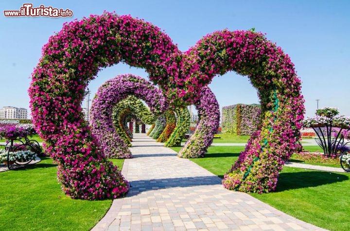 Dubai miracle garden il più grande giardino di fiori del