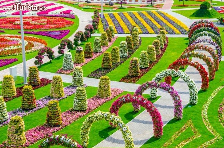 fiori da giardino giardino fiorito : Dubai Miracle Garden: il pi grande giardino di fiori del mondo, nel ...