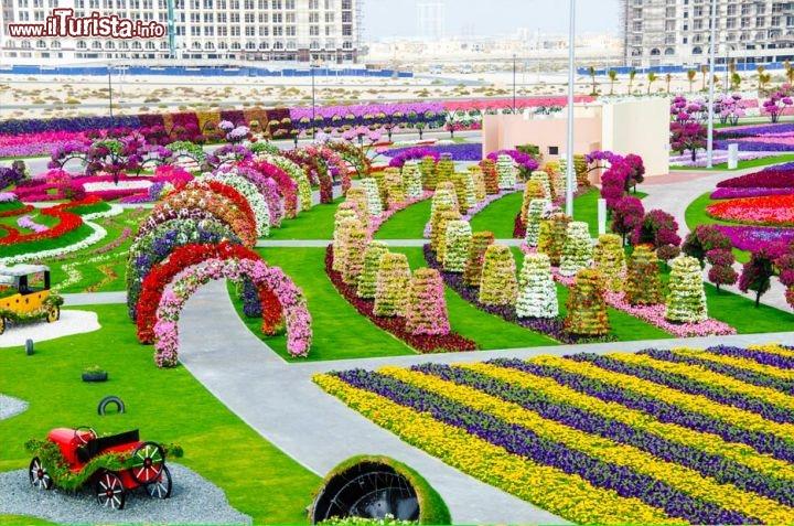 Il sito del dubai miracle garden verra completato con for Guarda cosas para jardin