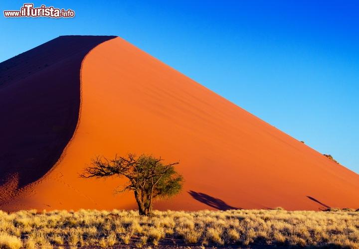 Il deserto del namib namibia unesco si estende per lo for Colore vento di sabbia deserto