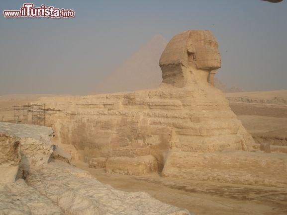 Le foto di cosa vedere e visitare a Egitto