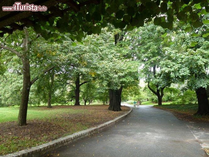 Brooklyn botanic garden foto new york city brooklyn for Hotels near brooklyn botanical garden