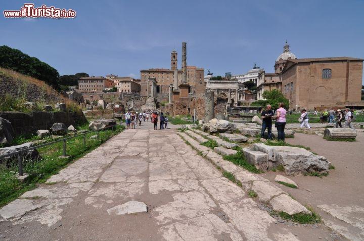 Cosa vedere e cosa visitare Foro Romano
