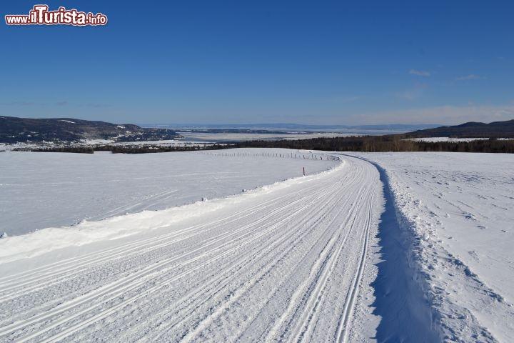 Le foto di cosa vedere e visitare a Quebec
