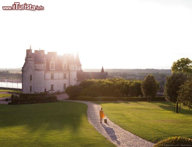 Le foto di cosa vedere e visitare a Francia