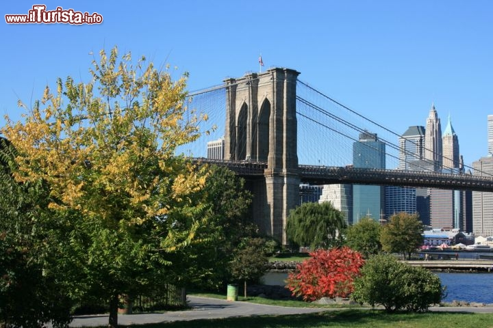 Immagine Brooklyn Bridge Park a New York City  - © Christopher Penler / Shutterstock.com