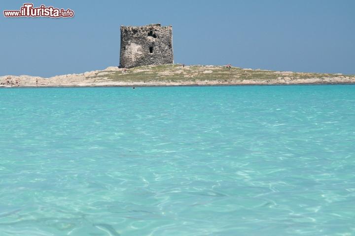 Spiaggia della pelosa in sardegna la spiaggia della for Isola che da il nome a un golfo della sardegna