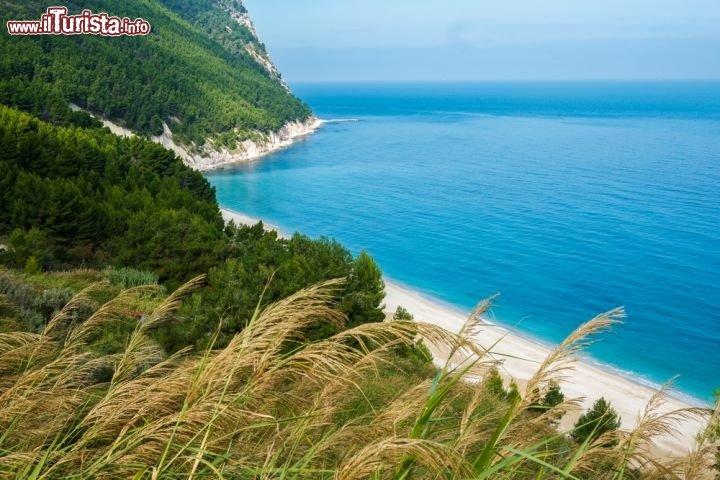 Cartina Litorale Marche.Vacanze Mare Marche 2021 Spiagge E Localita Balneari Dove Andare