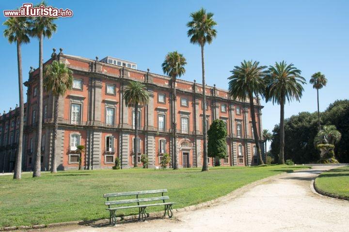 Cosa vedere e cosa visitare Museo di Capodimonte