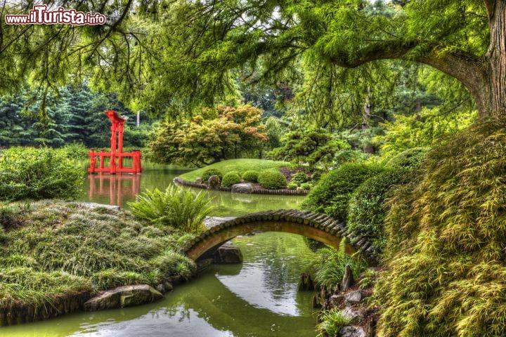 Bucolico giardino in stile giapponese brooklyn foto for Laghetto giapponese