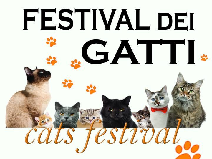 Festival dei Gatti Vaprio d\'Adda