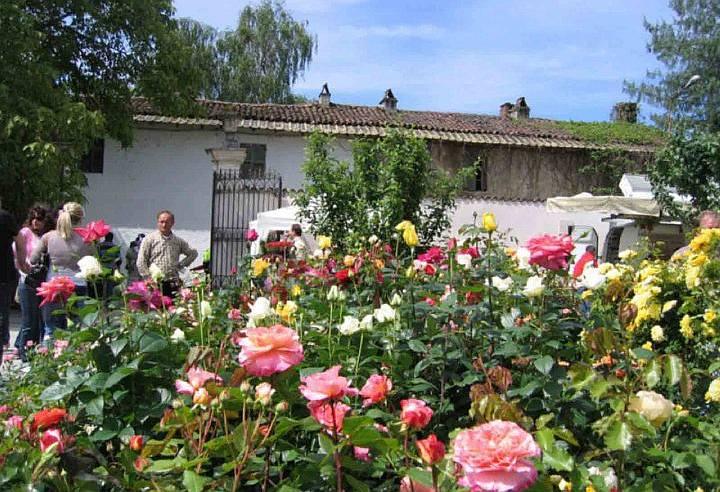 OrTicino, mostra mercato fiori orticola Cameri