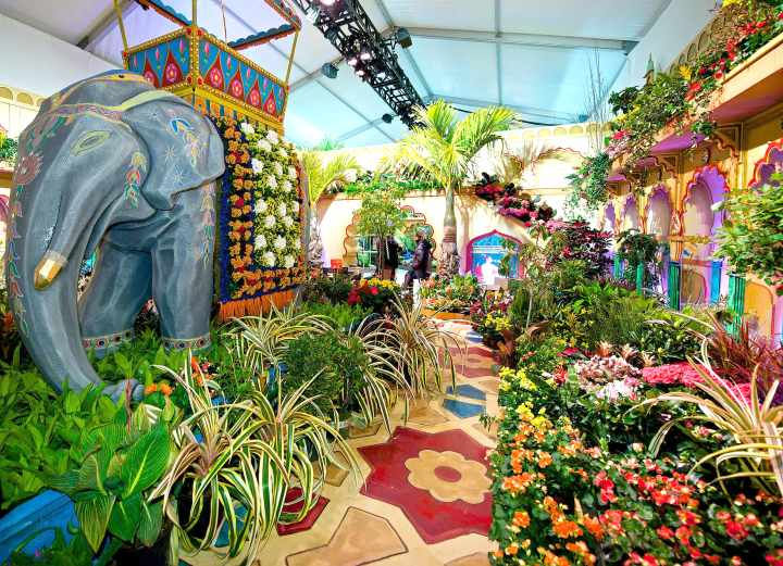 Macy's Flower Show Stati Uniti d\'America