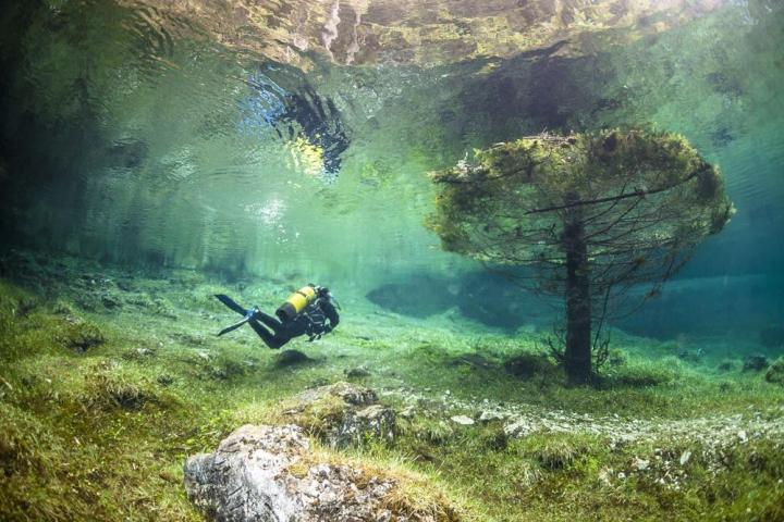 Gruner See (Austria): immersioni subacquee nel bosco sommerso