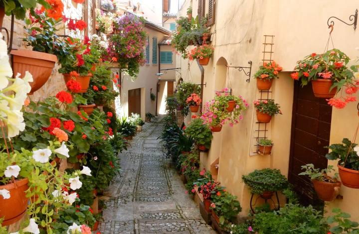 Balconi fioriti Santarcangelo di Romagna