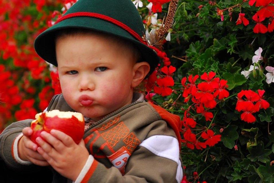 Pomaria: la Festa della Mela DOP della Val di Non Cles
