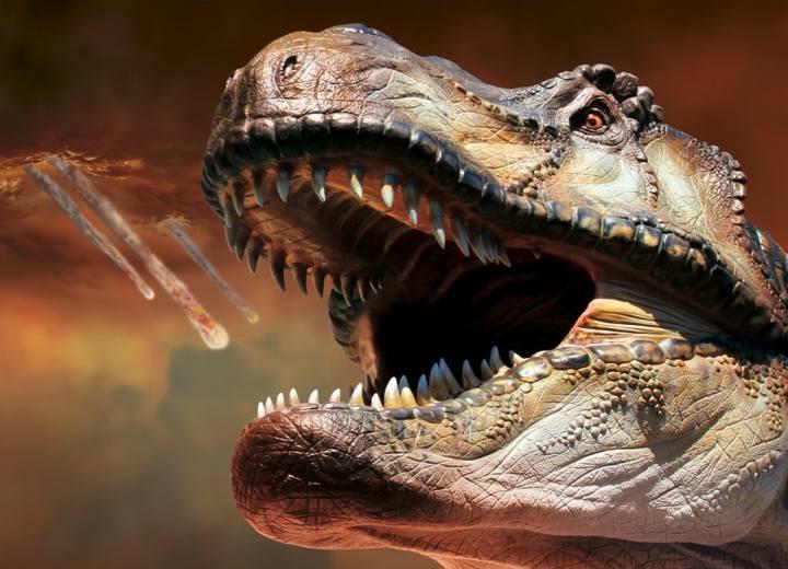 Extinction, prima e dopo la scomparsa dei dinosauri Gubbio