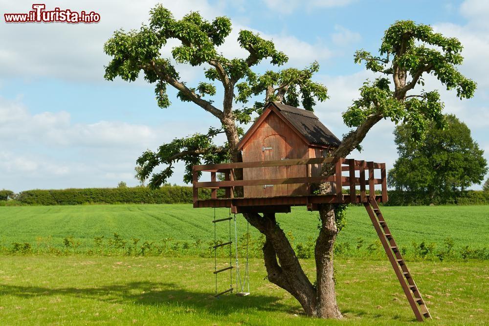 Dove dormire e mangiare sugli alberi in italia - Casa sull albero per bambini fai da te ...