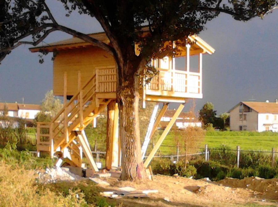 Dove dormire e mangiare sugli alberi in italia for Case in legno sugli alberi