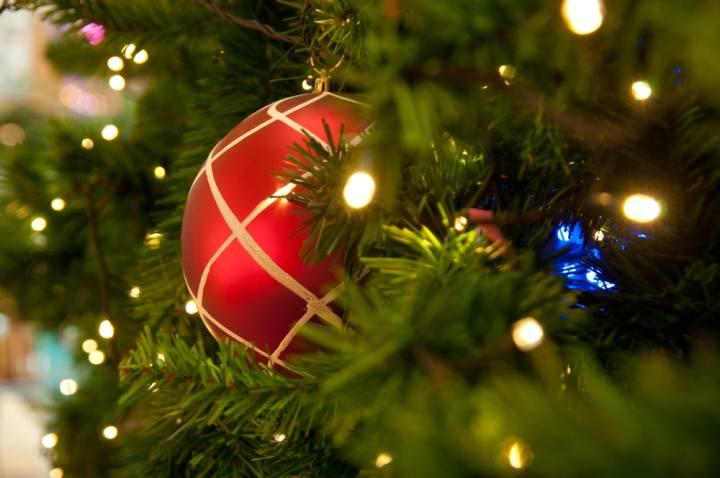 Natale in Corte Correzzola